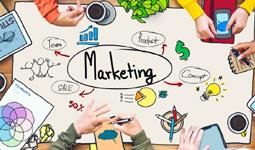 Invista em Marketing